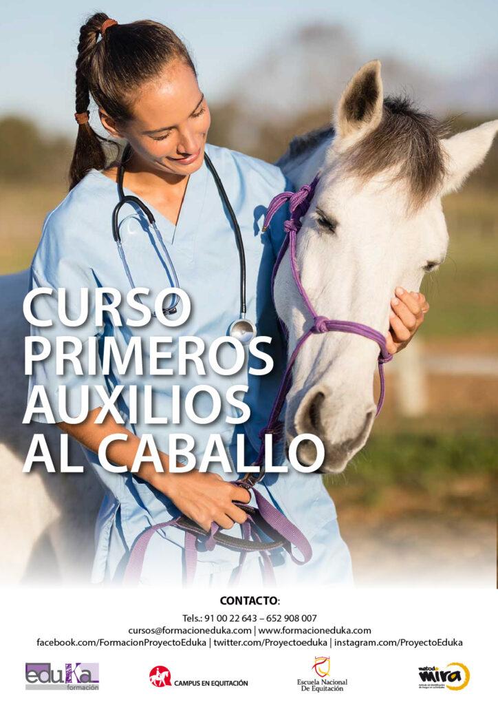 Curso de Primeros Auxilios al Caballo - Escuela Nacional de Equitación